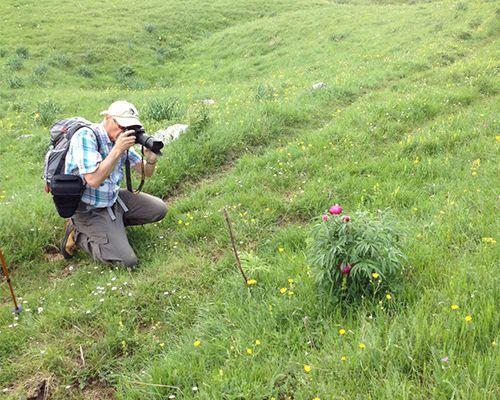 Workshop fotografico in natura nella stagione dei risvegli- Abruzzo
