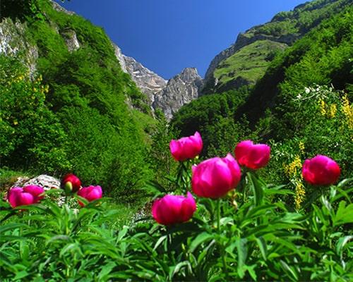 Trekking di primavera sulla Majella-Abruzzo