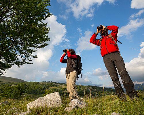 Trekking di primavera ad osservare gli orsi del Parco Nazionale d'Abruzzo